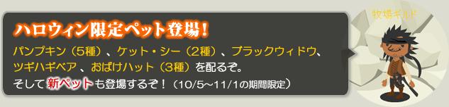 ハロウィン限定ペット登場!